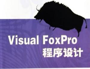 Visual.FoxPro程序设计