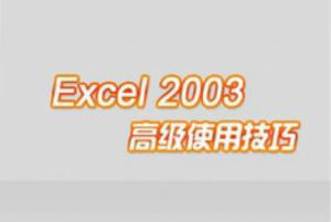 Excel2003高级使用技巧