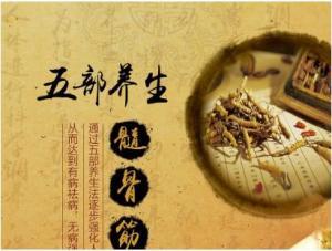 中医文化与养生